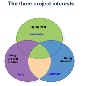 3-3-project-interest-org